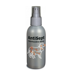 Spray Desinfectante Antisept para Perro y Gato (6)