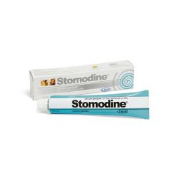 Fatro-Stomodine Pasta Oral para Perro y Gato (1)