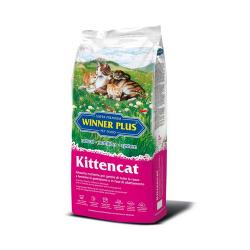 Winner Plus-WP Kittencat (1)