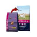 Eukanuba-Cachorro Razas Pequeñas (2)