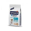 Affinity Advance-Cachorro Razas Pequeñas (1)