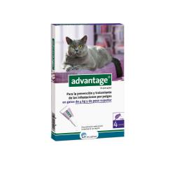 Ecuphar-Advantage 80 Gato +4kg (1)