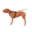 Royal canin renal dieta para perros (lata)