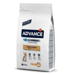 Affinity Advance-Yorkshire Terrier Adulto (2)