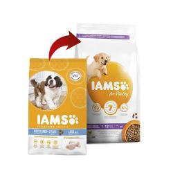 Iams-Cachorro Razas Grandes (1)