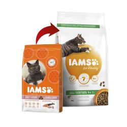 Iams-Adulto Proactive Salmón (1)