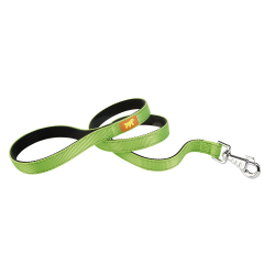 Correa Dual G20 110 Green para perros Ferplast