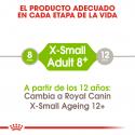 X-Small Ageing +8 Razas Miniaturas (1)
