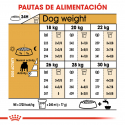 Royal Canin-Bulldog Inglés Adulto (1)