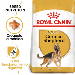 Royal Canin-Pastor Alemán Adulto (1)