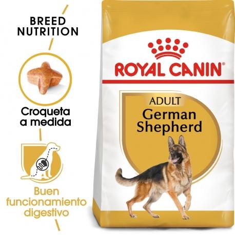 Royal Canin-Pastor Alemán Adulto (1)