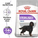 Royal Canin-Maxi Esterilizado Razas Grandes (1)