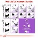 Royal Canin-Sterilised +7 Años (1)