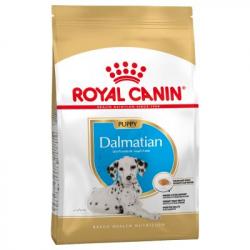 Royal Canin-Dalmata Cachorro (1)