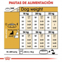 Royal Canin-Setter Adulto (1)