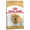 Royal Canin-Gran Danés Adulto (1)