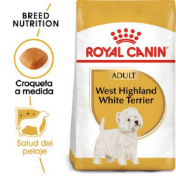 Royal Canin-West Highland White Terrier Adulto (1)
