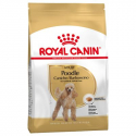 Royal Canin-Caniche Adulto (1)