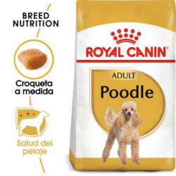 Royal Canin-Caniche Adulto (1)