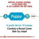 Royal Canin-Shih Tzu Cachorro (1)