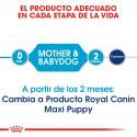 Royal Canin-Maxi Starter Mother&Babydog (1)