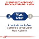 Maxi Adulto Razas Grandes (10)