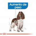 Royal Canin-Medium Light Razas Medianas (1)