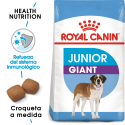 Giant Junior Razas Gigantes (16)