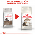 Royal Canin-Ageing +12 Años (1)