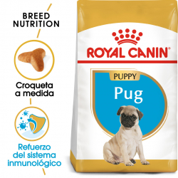 Royal Canin-Carlino Cachorro (1)