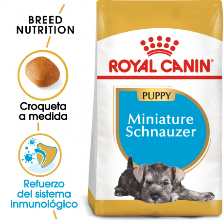 Royal Canin-Schnauzer Miniature Cachorro (1)