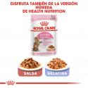 Royal Canin-Kitten Sterilizado (1)