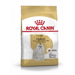 Royal Canin-Bichon Maltese Adulto (1)