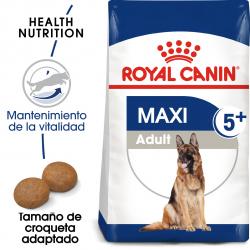 Royal Canin-Maxi Adulto +5 Años Razas Grandes (1)