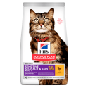 Hills-SP Feline Adult Sensitive Stomach. (1)