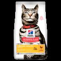 Feline Urinary Sterilised (1)