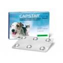 Elanco-Capstar para Perros Pequeños y Gatos (1)