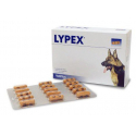 vetplus-Lypex para Perro y Gato (1)