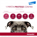 Advantix 10-25 KG Pipetas Triple Protección (6)