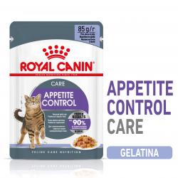 Royal Canin Appetite control care gelatina comida húmeda gato
