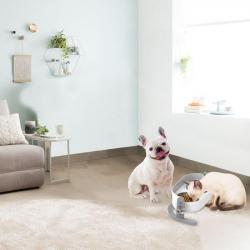 AFP Comedero Elevado Lifestyle para perros