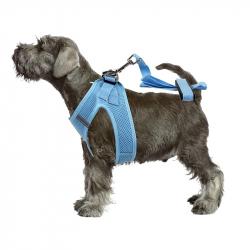 Pawise Alfombra de Juego para perros Pawise para perros