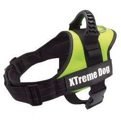 Arnés para perros Xtreme Dog Verde Neon