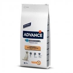 Affinity Advance-Labrador Adulto (1)