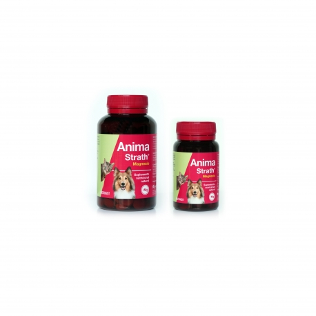 Stangest-Fortificante Natural para Perro y Gato (1)