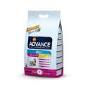 Affinity Advance-Adult +8 Años Razas Pequeñas (1)