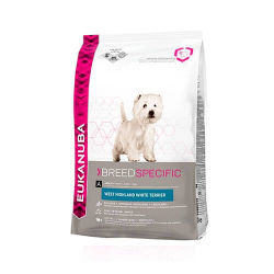 Eukanuba-West Highland White Terrier Adulto (1)